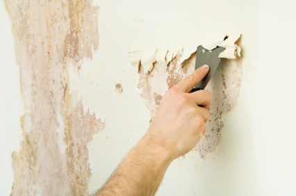 Wallpaper Removal Middlesex County